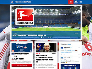 Website mit TYPO3: Hamburger Sport-Verein